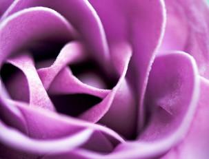 Духи с женскими феромонами - запах любви