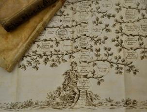 Генеалогическое дерево семьи