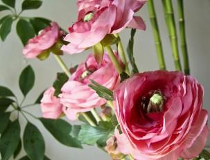 Что означает роза на языке цветов